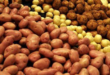 A batata é rica? valor nutricional e seu impacto sobre o nosso corpo