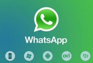 """Como em """"Votsape"""" restaurar a correspondência? aplicativo WhatsApp"""