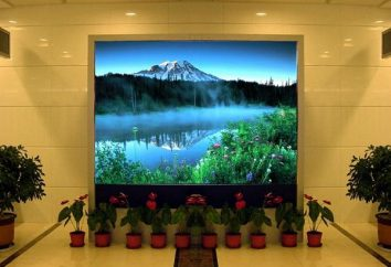 Jakie są różne typy monitorów matryc?