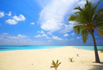 Eine Hochzeit auf der Malediven offiziellen und symbolisch: die Organisation, die Kostenüberprüfungen