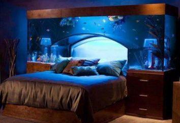 Comment prendre soin de l'aquarium
