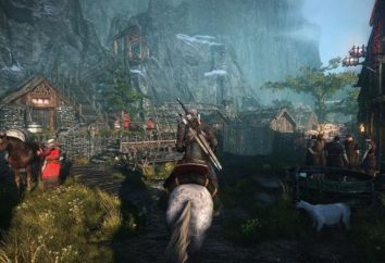 The Witcher 3: Caccia Selvaggia: i requisiti di sistema, informazioni di carattere generale