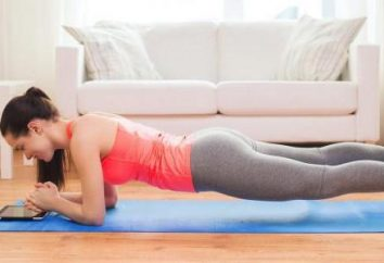 Aptidão em casa para iniciantes: exercícios durante o treinamento
