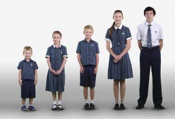 L'introduction d'uniformes scolaires: les arguments « pour » et « contre »