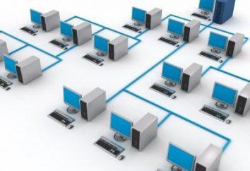 Structured Sistema di cablaggio (SCS) – che cos'è?