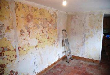 Posso pendurar papel de parede em drywall sem massa?