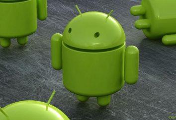 Aby dowiedzieć się, jak skonfigurować dostęp do Internetu na Androida