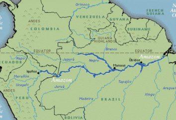 Was ist der längste Fluss in der Welt?
