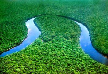 Czy wiesz, że tam jest rzeka, która przecina równik dwukrotnie?