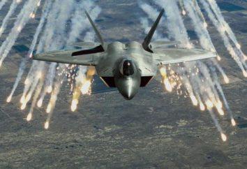 Das beste Kampfflugzeug (Foto)