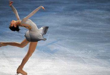 Quais são os saltos na patinação artística? Mudança patinação artística saltos. saltos de patinação Rib figura