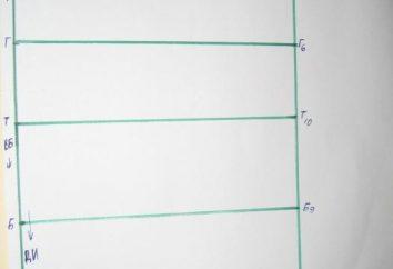bases padrão de construção – a forma mais intuitiva para um ajuste perfeito.
