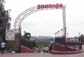 Zoo Minsk merita una visita!