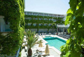 Hotel Olympic Kosma Bomo Club 3 * (Halkidiki, Griechenland) Fotos und Bewertungen