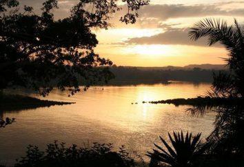 Jezioro Tana: położenie geograficzne, pochodzenie basenu, zabytki i przyroda