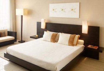 Programme d'aménagement des meubles dans la salle: avantages et inconvénients