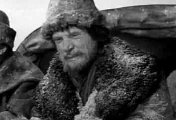 """L'immagine di Savelich nella storia """"La figlia del capitano"""" di A.S. Pushkin"""