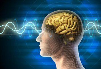 """O conceito de """"consciência"""", propriedades e níveis de consciência. Onde a nossa consciência se encaixa?"""