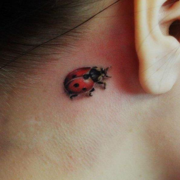 Biedronka Tatuaż Wykwintne Piękno