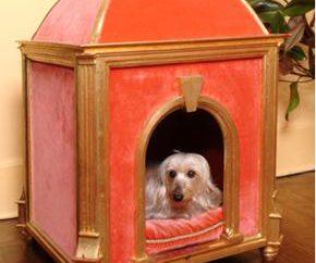 Die Wahl eines Hauses für einen Hund