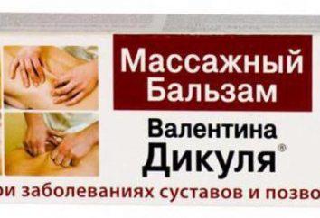 Dikulja balsam dla stawów: opinie, opis, skład, cena