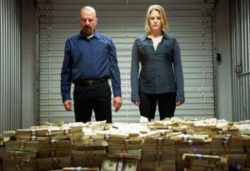 """A série """"Breaking Bad"""": comentários. O conteúdo das estações do ano, os atores, data de lançamento"""