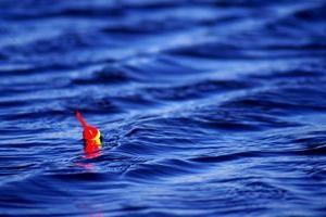 Secretos de la pesca: la pesca del flotador abordan