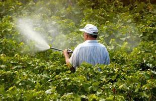 Pesticides – substances qui tuent les ravageurs