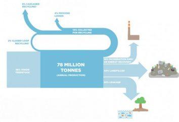 Entro il 2050, la plastica in mare è più che pesci