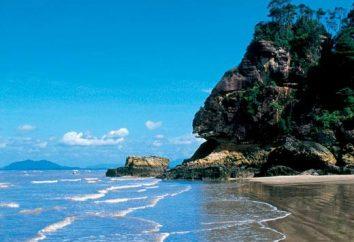 nature incroyable de Bornéo