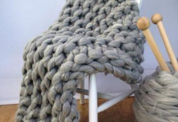 Wie man Decken Speichen stricken: das Schema und Beschreibung von mehreren einfachen Modellen