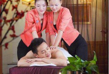 "Massager ""Nozomi"": guide, commentaires, prix"