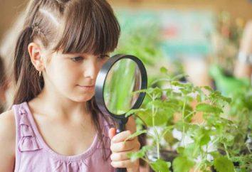 Wie ein Detektiv zu werden: Ausbildung in detective