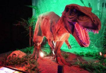 """""""Miasto dinozaurów"""" (VDNH): recenzje, godziny otwarcia, kierunki, zdjęcie"""