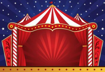 Qual é o sonho de um circo: o significado e a interpretação de um sonho
