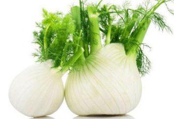 Zastosowanie nasion kopru, właściwości, składu, przeciwwskazaniach