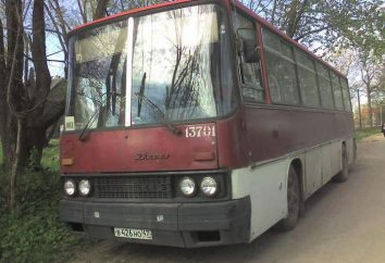 """""""Ikarus 256"""": le specifiche tecniche, il consumo di carburante e le foto"""