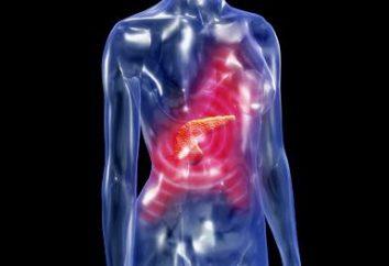 Die Behandlung von Pankreatitis: Drogen und Volksmedizin