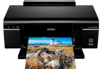 Fotodrucker Epson P50: ideale Balance zwischen Preis und Druckqualität