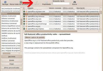 Programy dla Ubuntu: zainstalować i uruchomić
