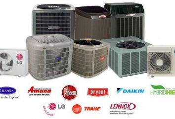 Pompa di calore: i veri proprietari del cliente, sfruttando