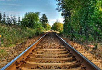 Um assento reservado 3U, F – o que isso significa? Aulas de vagões ferroviários. Regras para o transporte de animais de estimação no trem RZD