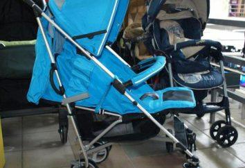 Wózek Lider Dzieci S600: opis, opinie