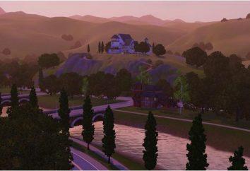 """Perchè """"The Sims 3"""" decolla? Le principali cause dei problemi e soluzioni"""