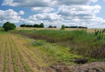 Prawo do nieograniczonej ciągłego użytkowania gruntów
