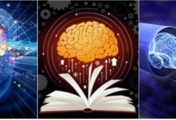 Nootropics der neuen Generation. Nootropics und Erfahrung ihrer Anwendung