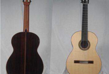 Guitarra de siete cuerdas – una excursión a la historia, afinación clásica