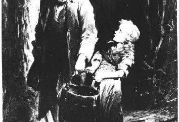 """Książka Viktora Gyugo """"Cosette."""" streszczenie"""