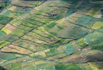Dozwolone wykorzystanie gruntów. ziemia
