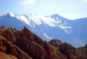 Mountain Bazardyuzyu: opis, cechy, zdjęcia